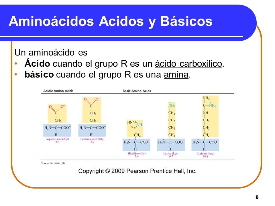 8 Aminoácidos Acidos y Básicos Un aminoácido es Ácido cuando el grupo R es un ácido carboxílico. básico cuando el grupo R es una amina.