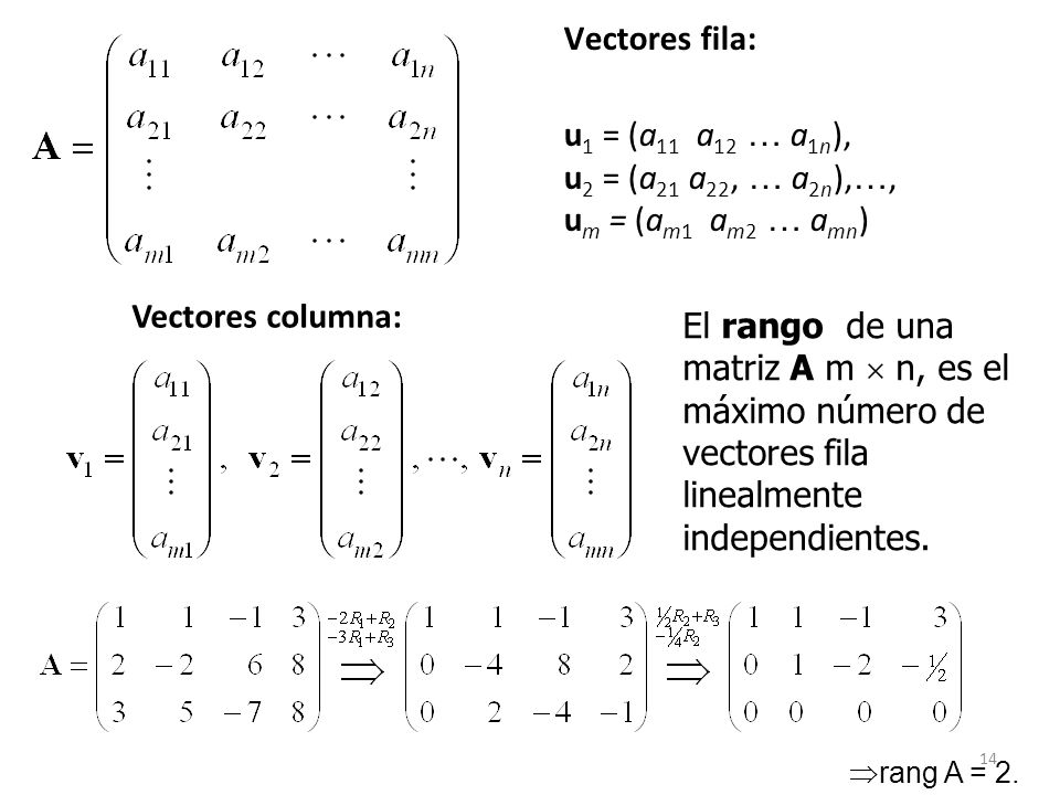 14 Vectores fila: u 1 = (a 11 a 12 … a 1n ), u 2 = (a 21 a 22, … a 2n ), …, u m = (a m1 a m2 … a mn ) Vectores columna: El rango de una matriz A m n,
