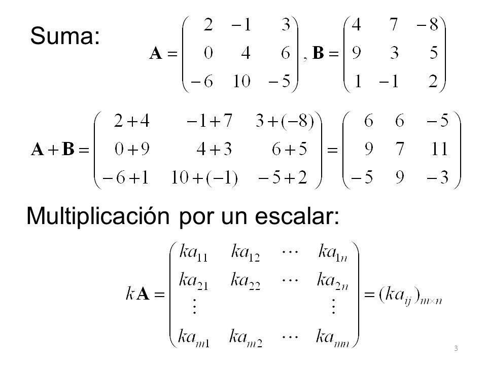 4 Si A, B, C son matrices m n, k 1 y k 2 son escalares: (i) A + B = B + A (ii) A + (B + C) = (A + B) + C (iii) (k 1 k 2 ) A = k 1 (k 2 A) (iv) 1 A = A (v) k 1 (A + B) = k 1 A + k 1 B (vi) (k 1 + k 2 ) A = k 1 A + k 2 A