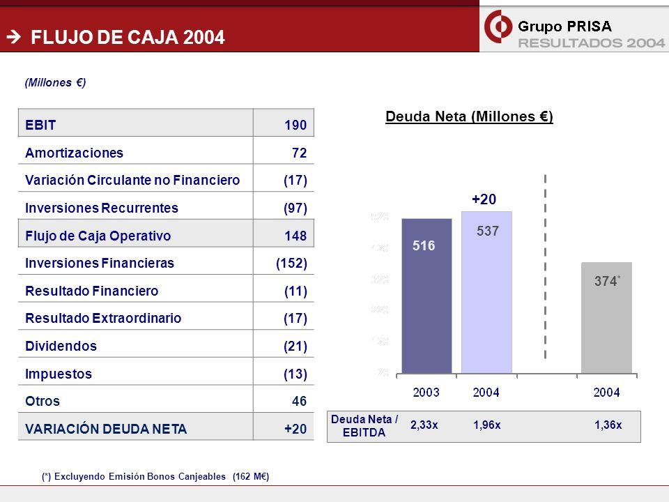 18 FLUJO DE CAJA 2004 Deuda Neta (Millones ) 516 537 374 * (*) Excluyendo Emisión Bonos Canjeables (162 M) EBIT190 Amortizaciones72 Variación Circulante no Financiero(17) Inversiones Recurrentes(97) Flujo de Caja Operativo148 Inversiones Financieras(152) Resultado Financiero(11) Resultado Extraordinario(17) Dividendos(21) Impuestos(13) Otros46 VARIACIÓN DEUDA NETA+20 Deuda Neta / EBITDA 2,33x1,96x1,36x (Millones )