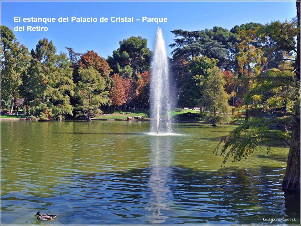 El estanque del Palacio de Cristal – Parque del Retiro