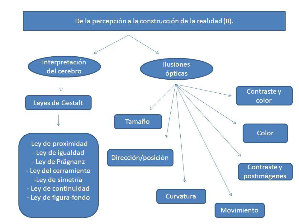 De la percepción a la construcción de la realidad (III).