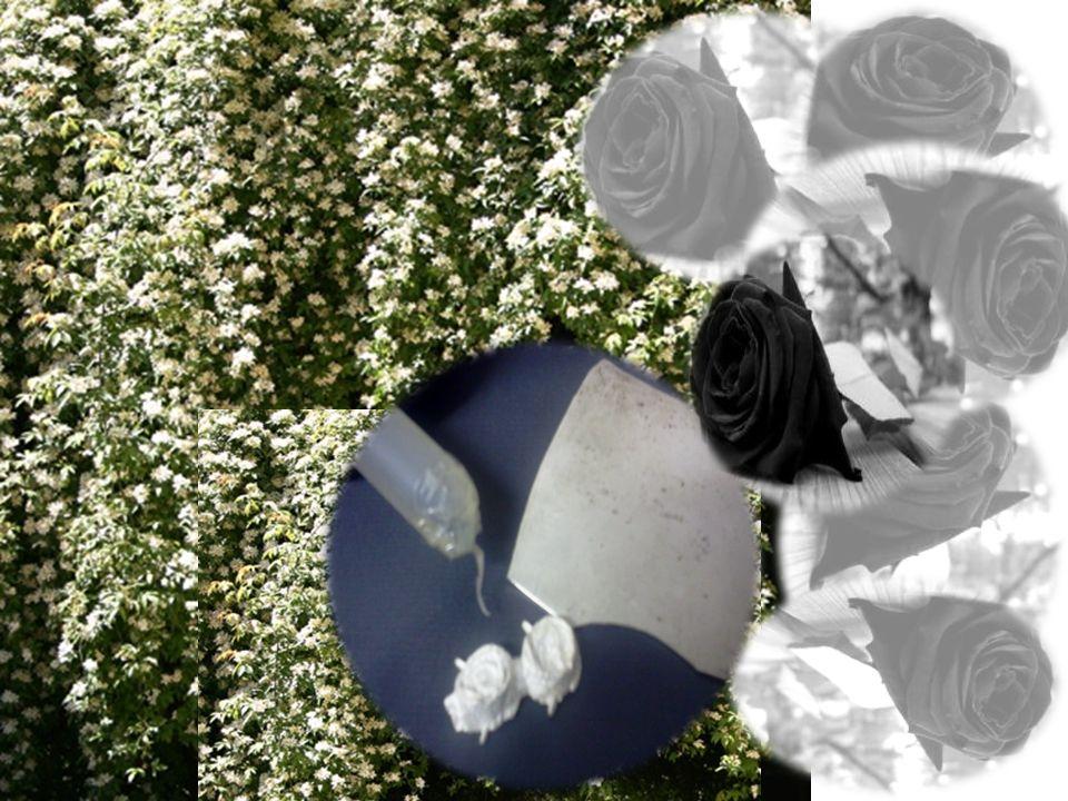 Con un trozo de plata reciclada elaborare una anilla redondo de 0.5 de ancho y del diámetro de la pieza de silicona, a esta anilla le soldare una pieza en forma de flor.