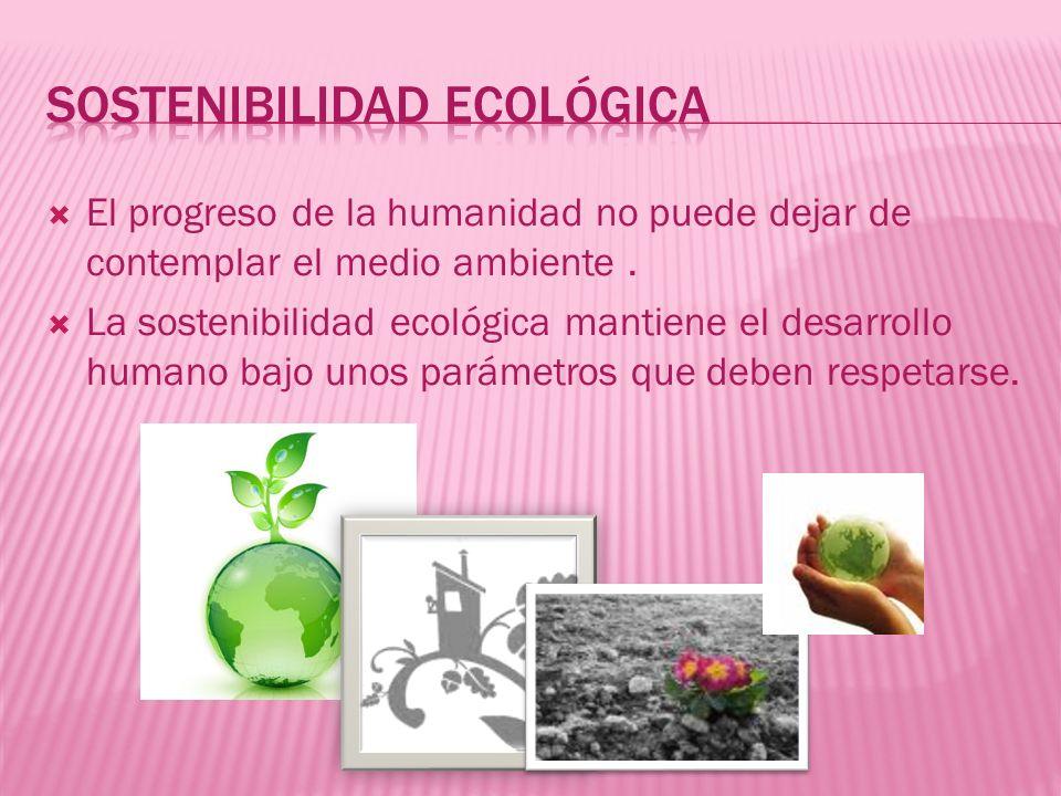 El progreso de la humanidad no puede dejar de contemplar el medio ambiente. La sostenibilidad ecológica mantiene el desarrollo humano bajo unos paráme