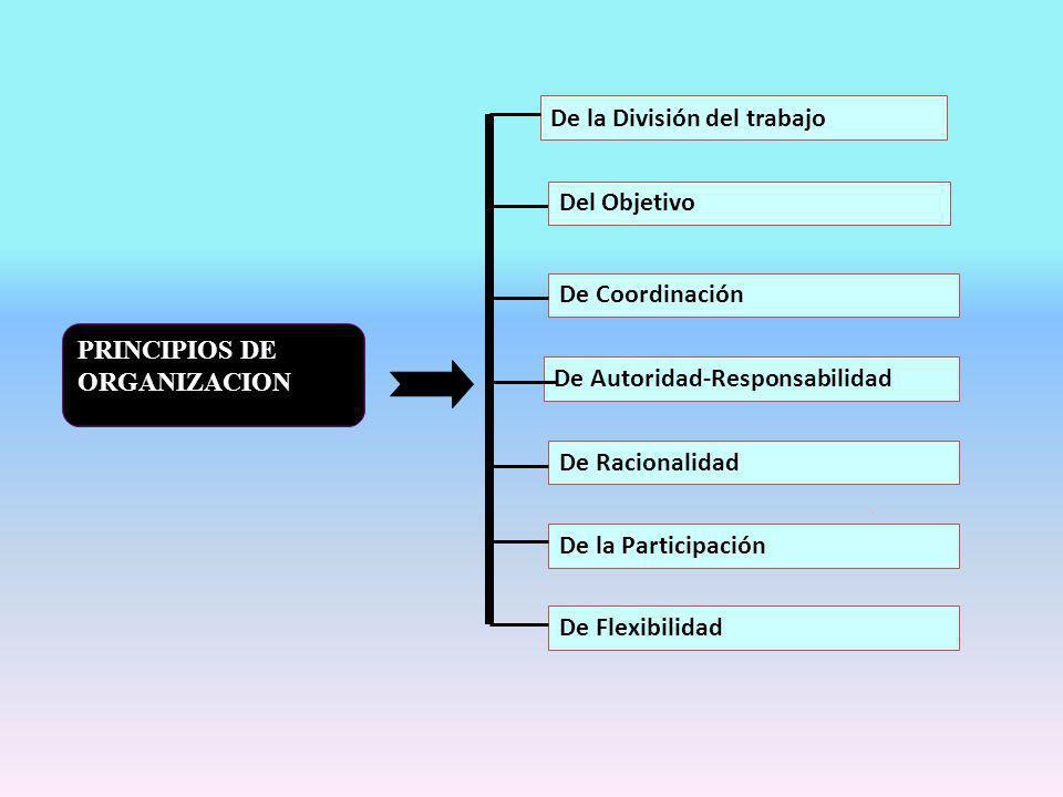 De la División del trabajo De Coordinación De Autoridad-Responsabilidad De Racionalidad De la Participación De Flexibilidad PRINCIPIOS DE ORGANIZACION