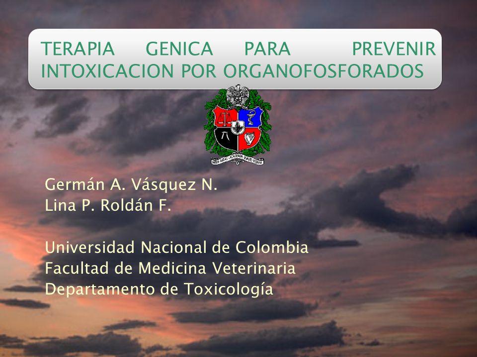 TERAPIA GENICA PARA PREVENIR INTOXICACION POR ORGANOFOSFORADOS Germán A.