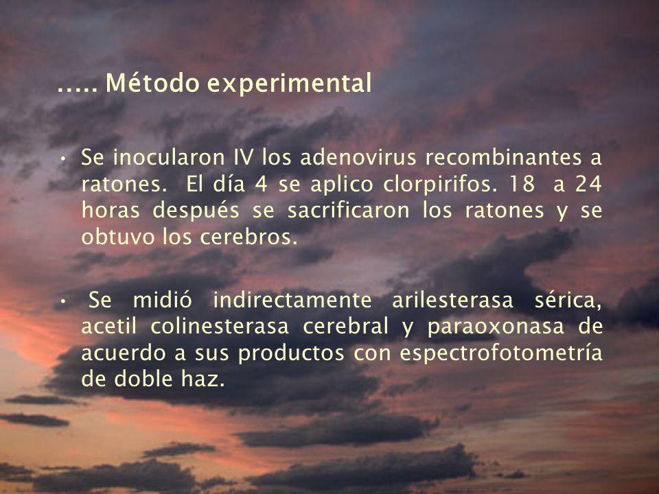 .....Método experimental Se inocularon IV los adenovirus recombinantes a ratones.