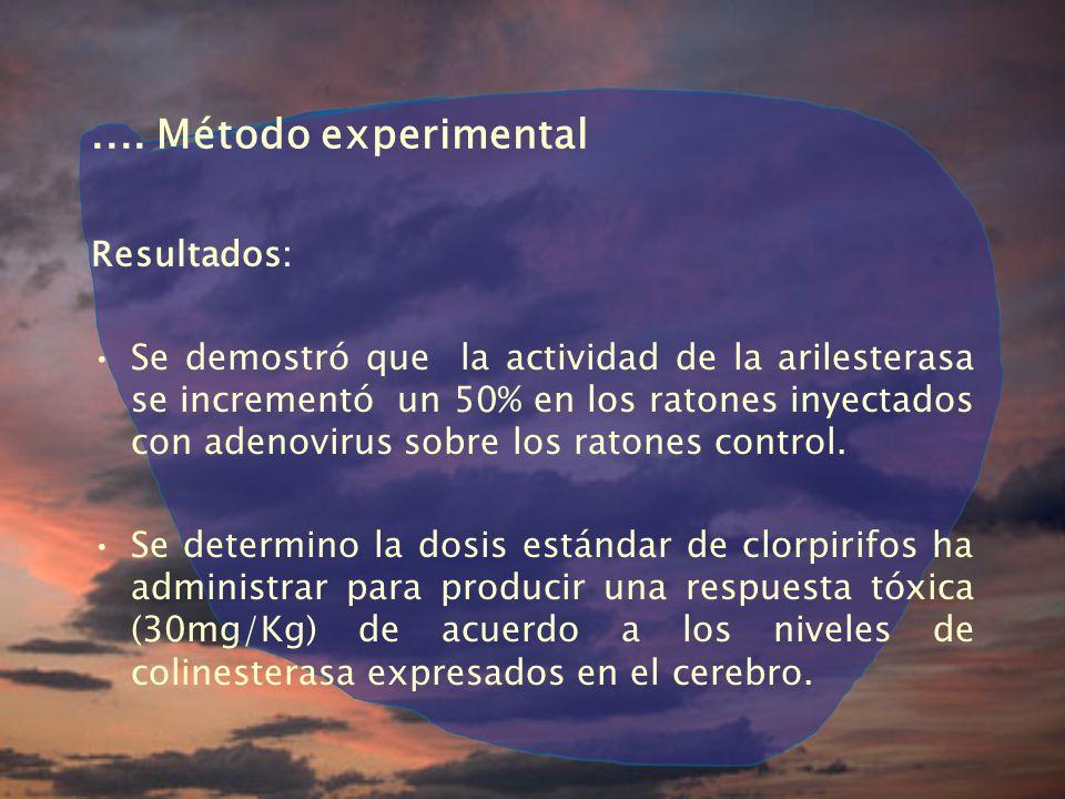 .... Método experimental Resultados: Se demostró que la actividad de la arilesterasa se incrementó un 50% en los ratones inyectados con adenovirus sob