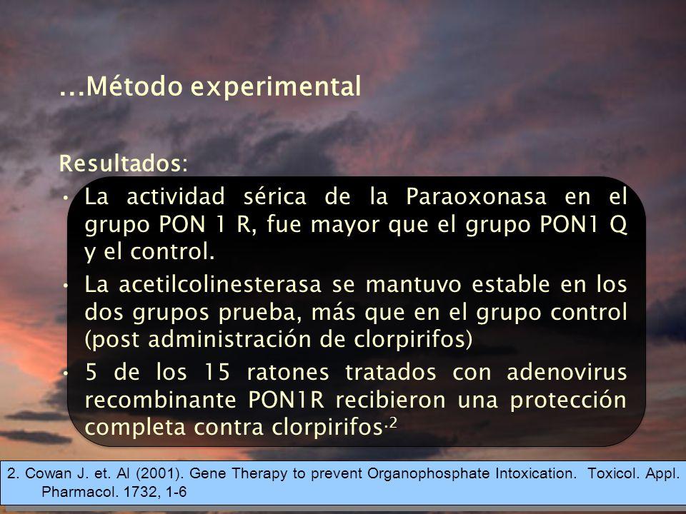 ...Método experimental Resultados: La actividad sérica de la Paraoxonasa en el grupo PON 1 R, fue mayor que el grupo PON1 Q y el control.