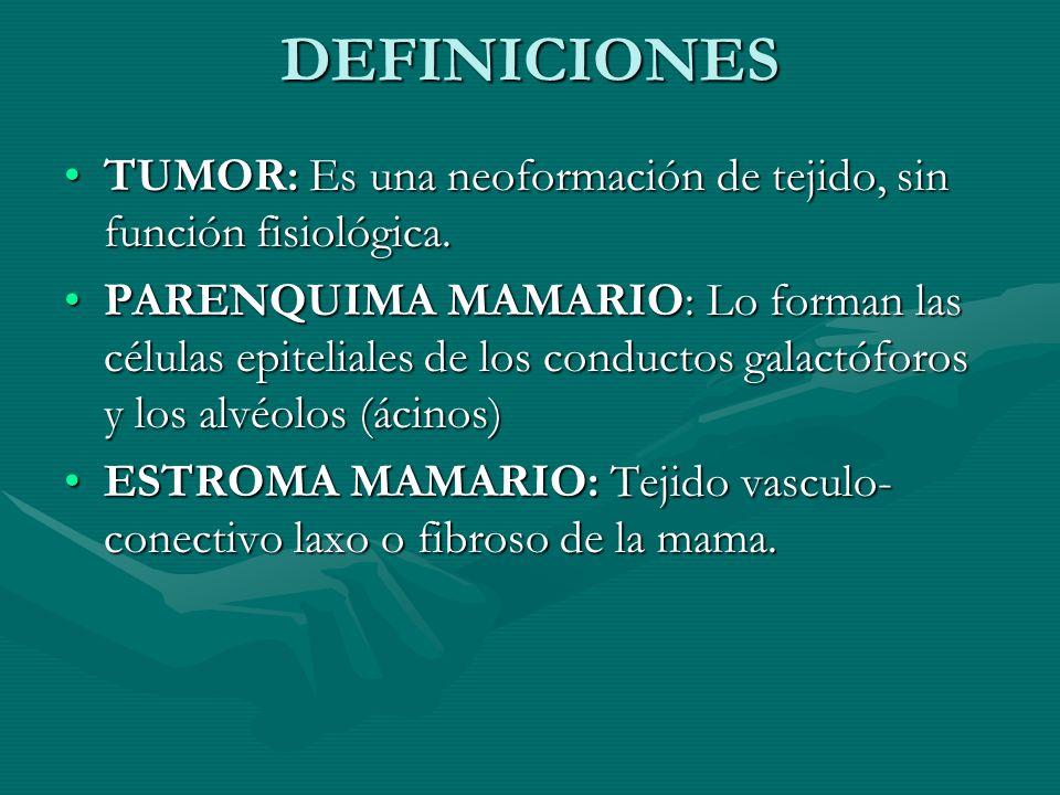 DEFINICIONES TUMOR: Es una neoformación de tejido, sin función fisiológica.TUMOR: Es una neoformación de tejido, sin función fisiológica. PARENQUIMA M