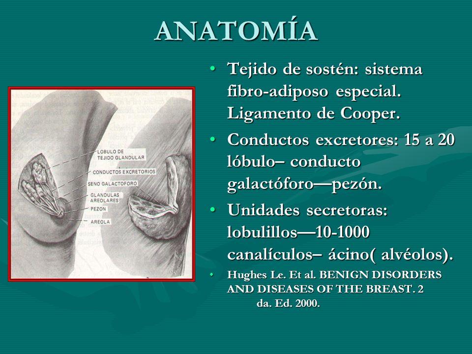ANATOMÍA Tejido de sostén: sistema fibro-adiposo especial. Ligamento de Cooper. Conductos excretores: 15 a 20 lóbulo– conducto galactóforopezón. Unida