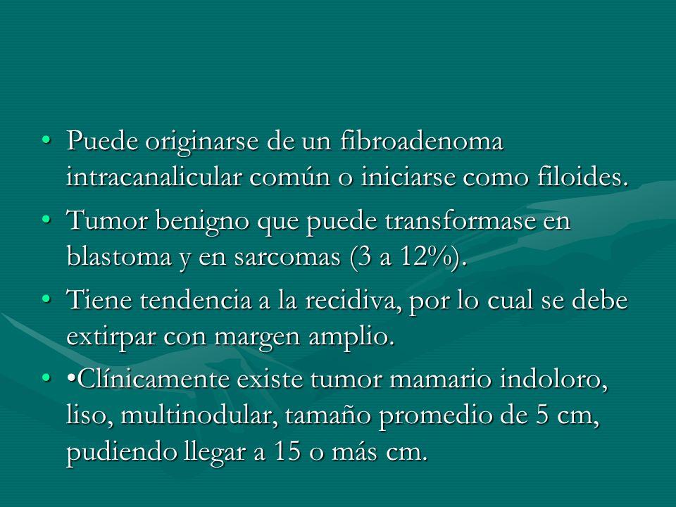 Puede originarse de un fibroadenoma intracanalicular común o iniciarse como filoides.Puede originarse de un fibroadenoma intracanalicular común o inic