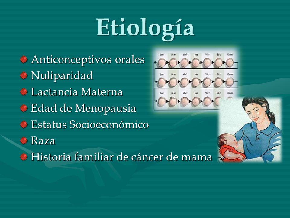 Etiología Anticonceptivos orales Nuliparidad Lactancia Materna Edad de Menopausia Estatus Socioeconómico Raza Historia familiar de cáncer de mama