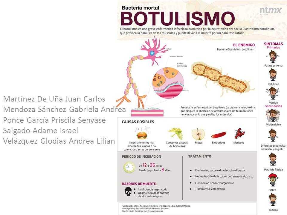 Tratamiento ventilatorio de soporte adecuado Eliminación de microorganismos del aparato digestivo Aplicación de la antitoxina botulínica trivalente frente a las toxinas A, B y E Patrick R.
