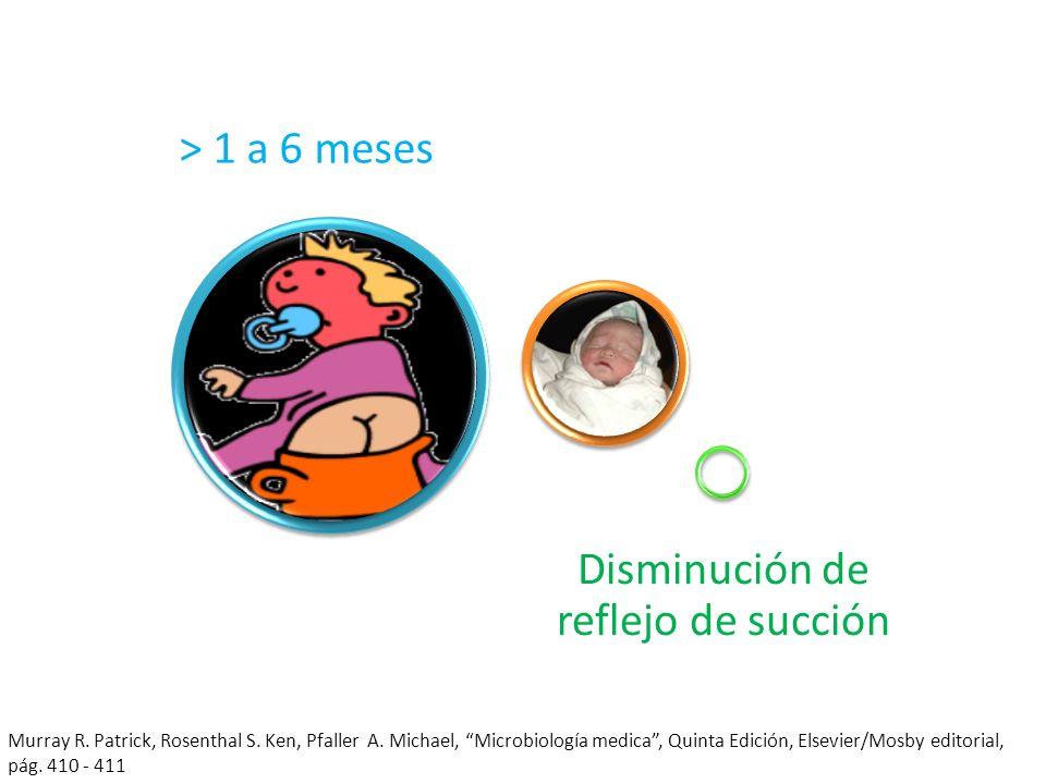 > 1 a 6 meses Disminución de reflejo de succión Murray R. Patrick, Rosenthal S. Ken, Pfaller A. Michael, Microbiología medica, Quinta Edición, Elsevie