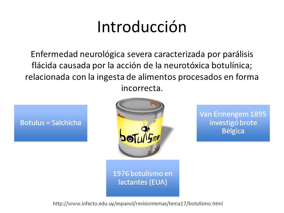 Etiología La toxinas botulínicas (7 de la A a la G) producidas por Clostridium botulinum (enfermedad solo A, B, E y F) Otras especies de clostridios que también producen este tipo de toxinas: C.