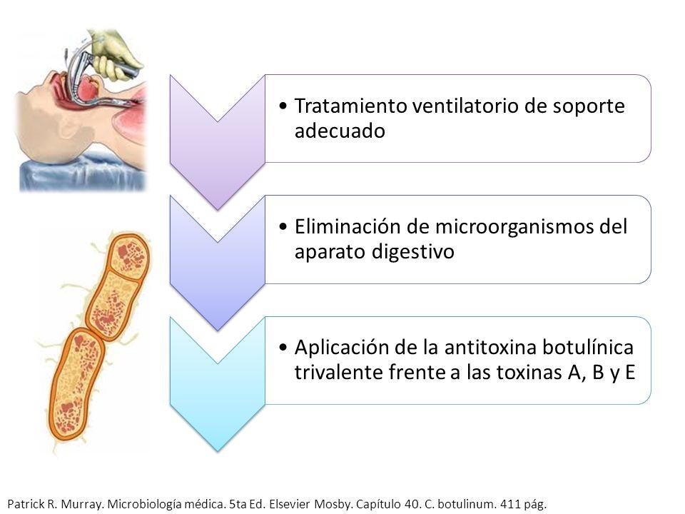Tratamiento ventilatorio de soporte adecuado Eliminación de microorganismos del aparato digestivo Aplicación de la antitoxina botulínica trivalente fr