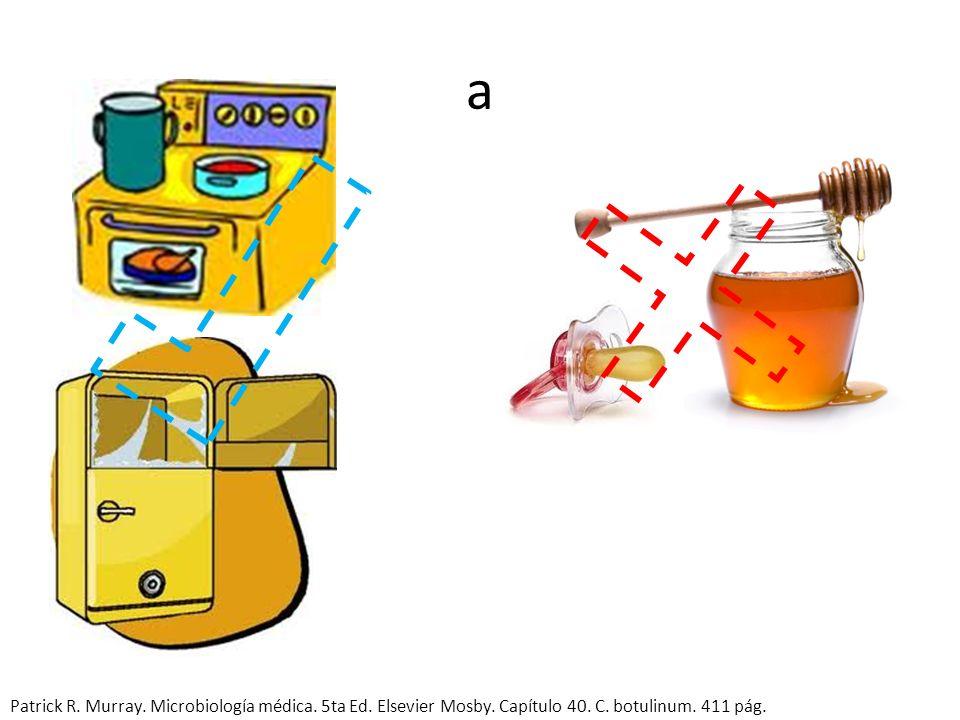 a Patrick R. Murray. Microbiología médica. 5ta Ed. Elsevier Mosby. Capítulo 40. C. botulinum. 411 pág.