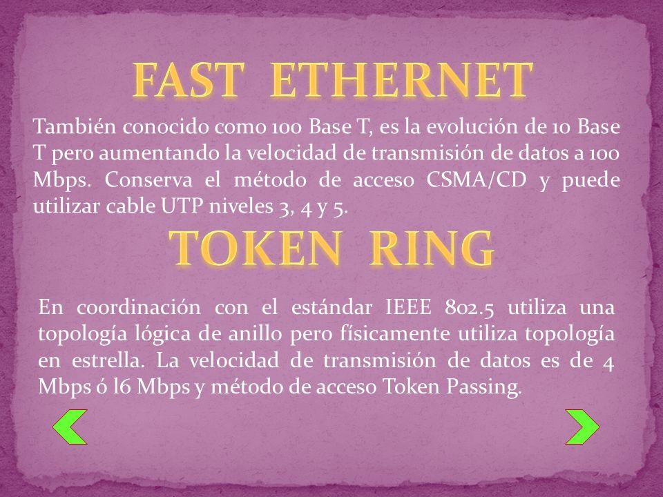 También conocido como 100 Base T, es la evolución de 10 Base T pero aumentando la velocidad de transmisión de datos a 100 Mbps. Conserva el método de