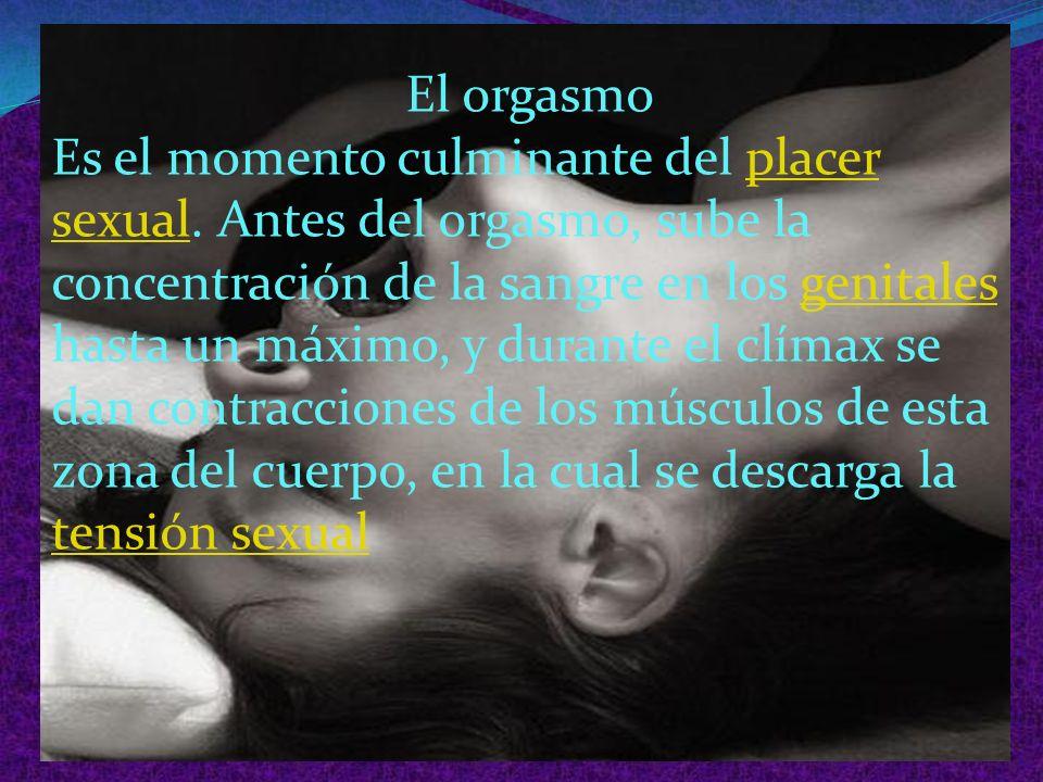 Índice El orgasmo Cambios físicos El orgasmo femenino Punto g El deseo la excitación y el orgasmo. Bibliografía Conclusión Fuentes de información.