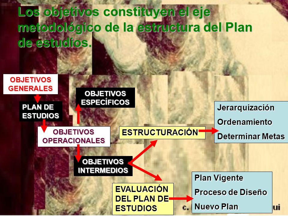 Los objetivos constituyen el eje metodológico de la estructura del Plan de estudios. OBJETIVOS GENERALES PLAN DE ESTUDIOS OBJETIVOS OPERACIONALES OBJE