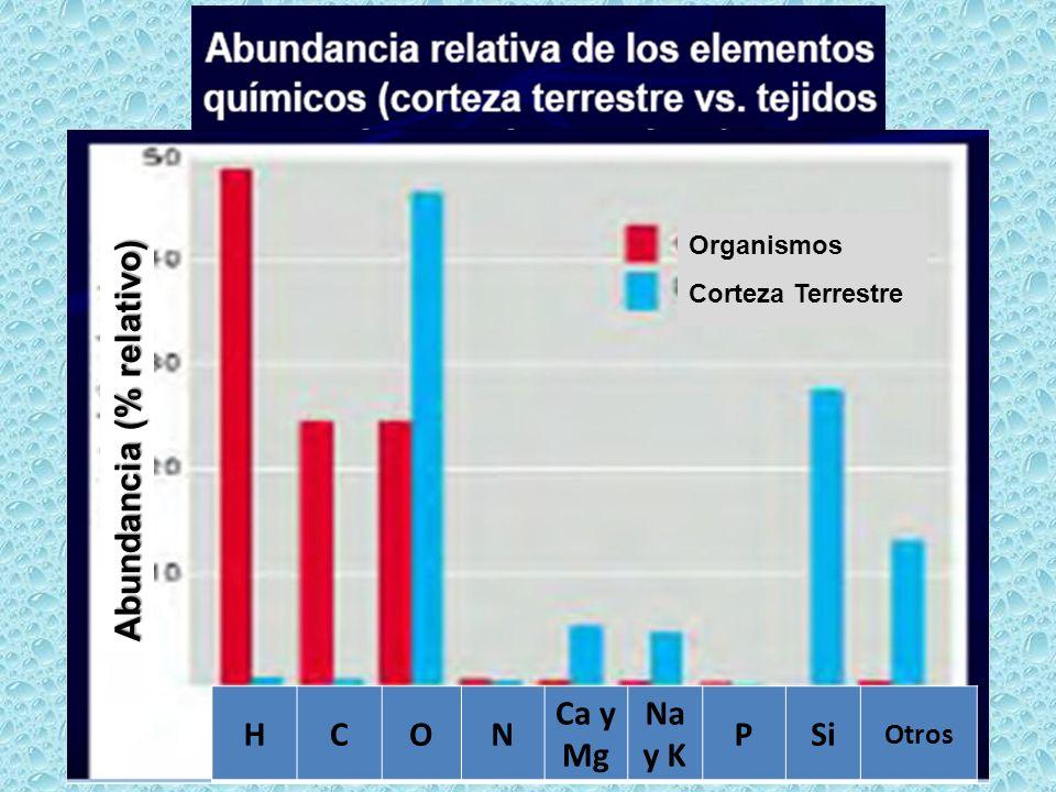 Organismos Corteza Terrestre Abundancia (% relativo) HCON Ca y Mg Na y K PSi Otros