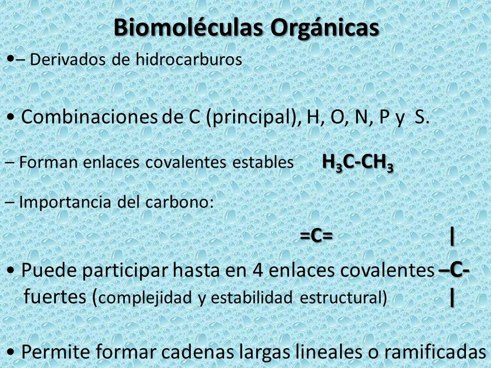 Biomoléculas Orgánicas – Derivados de hidrocarburos Combinaciones de C (principal), H, O, N, P y S. H 3 C-CH 3 – Forman enlaces covalentes estables H