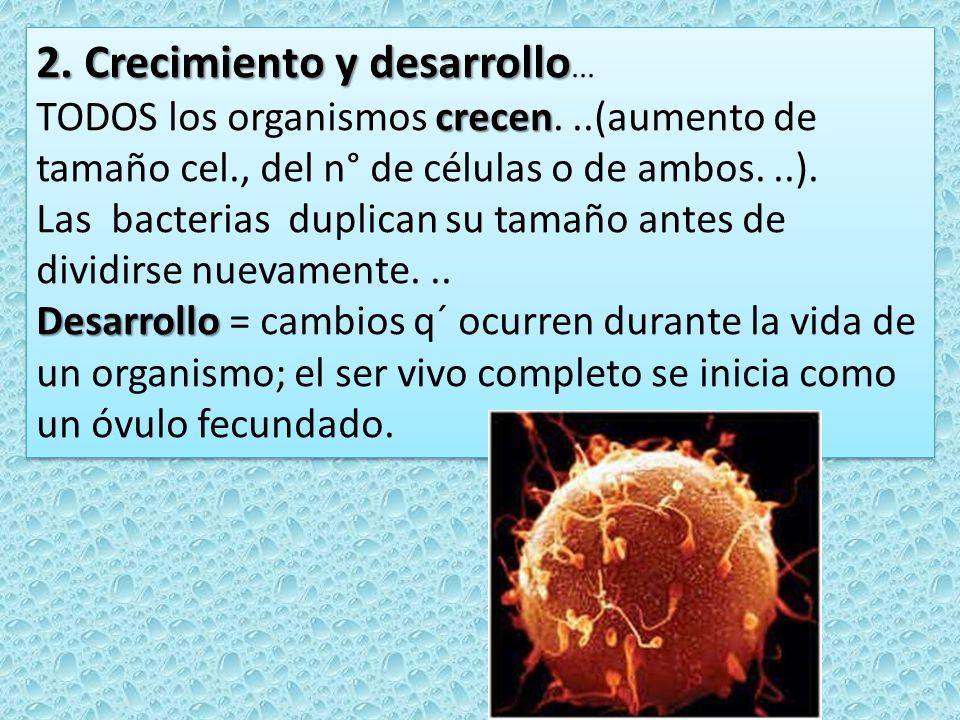2. Crecimiento y desarrollo 2. Crecimiento y desarrollo... crecen TODOS los organismos crecen...(aumento de tamaño cel., del n° de células o de ambos.