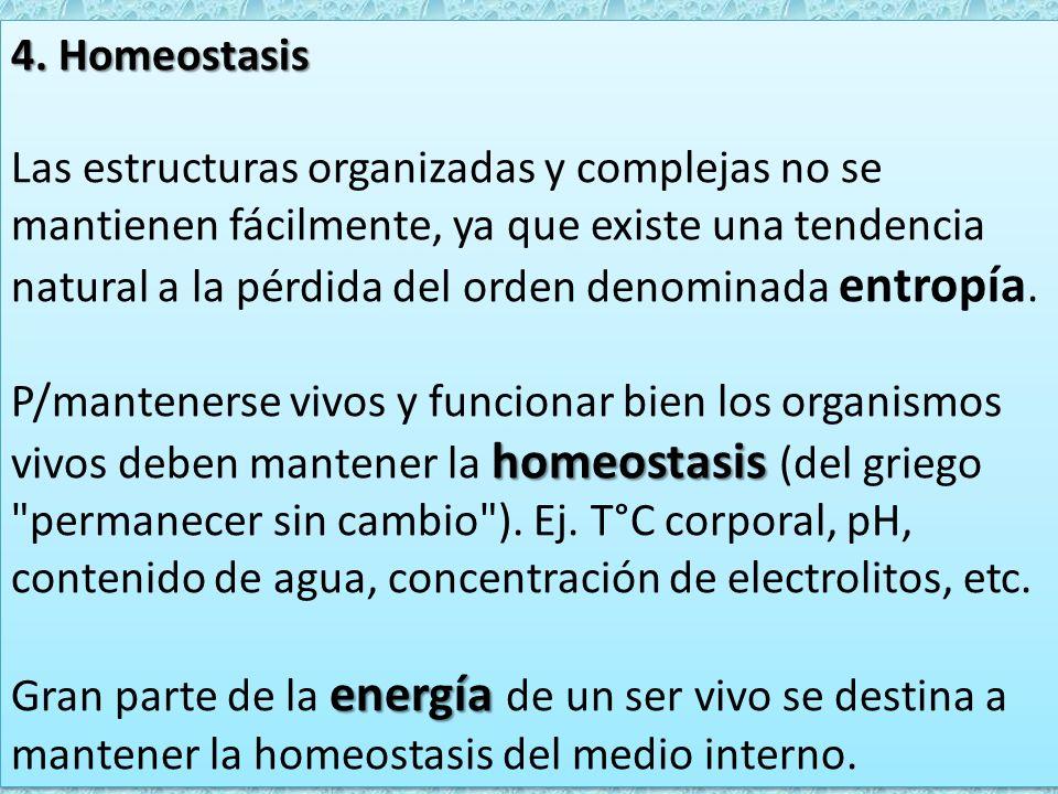 4. Homeostasis Las estructuras organizadas y complejas no se mantienen fácilmente, ya que existe una tendencia natural a la pérdida del orden denomina