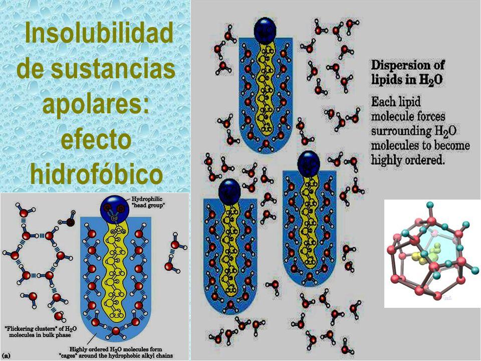 Insolubilidad de sustancias apolares: efecto hidrofóbico