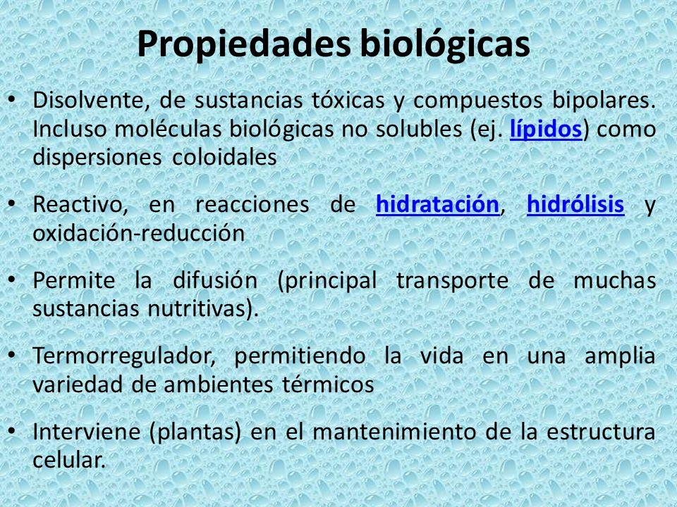 Propiedades biológicas Disolvente, de sustancias tóxicas y compuestos bipolares. Incluso moléculas biológicas no solubles (ej. lípidos) como dispersio