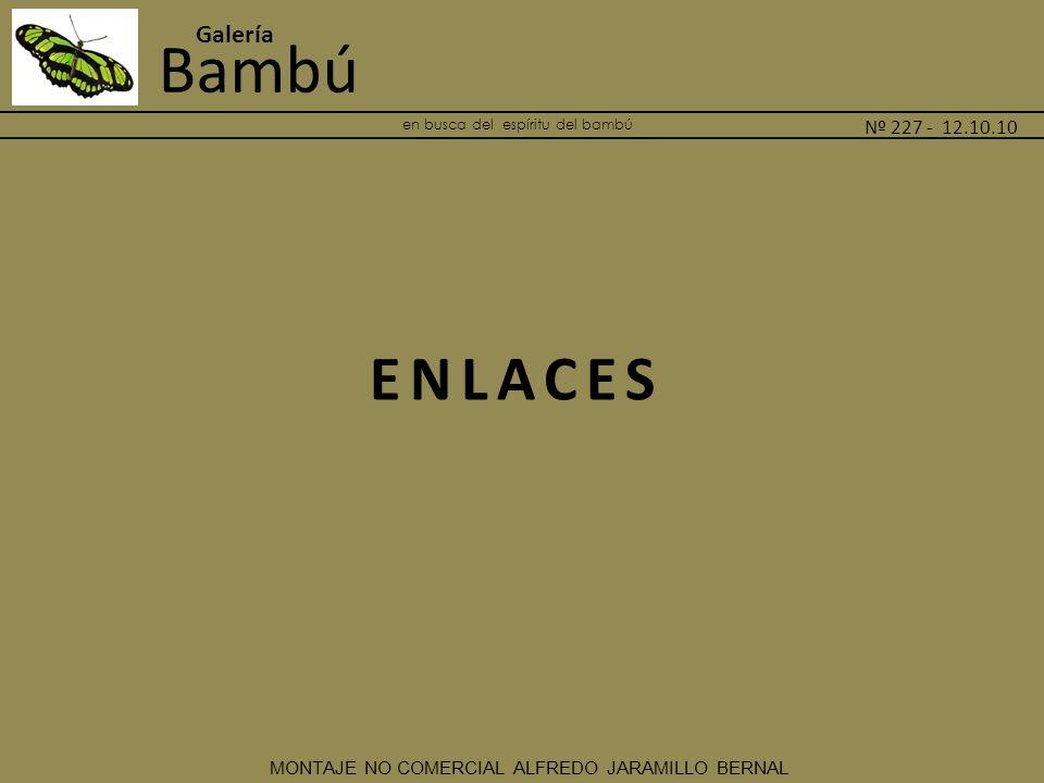 Bambú Galería Nº 227 - 12.10.10. MONTAJE NO COMERCIAL ALFREDO JARAMILLO BERNAL en busca del espíritu del bambú _______________________________________