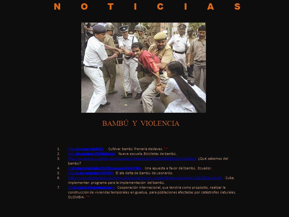 NOTICIAS 1.http://www.mpuebla.com/nota.php?id=16735 Cultivar bambú frenaría deslaves. **http://www.mpuebla.com/nota.php?id=16735 2.http://larealnuevae
