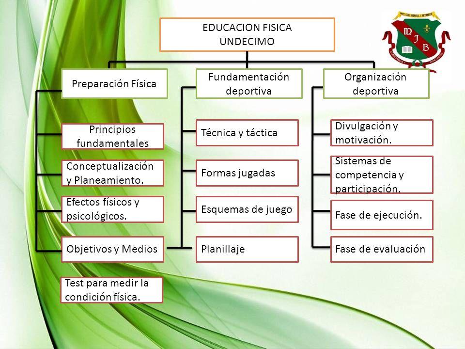 EDUCACION FISICA UNDECIMO Principios fundamentales Conceptualización y Planeamiento. Efectos físicos y psicológicos. Objetivos y MediosPlanillaje Prep