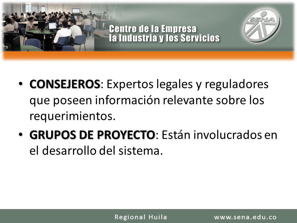CONSEJEROS CONSEJEROS: Expertos legales y reguladores que poseen información relevante sobre los requerimientos. GRUPOS DE PROYECTO GRUPOS DE PROYECTO