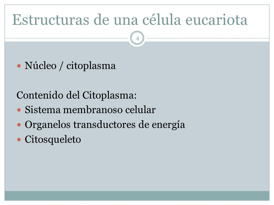 http://fai.unne.edu.ar/biologia/cel_euca/celula2.htm Célula vegetal mostrando el núcleo Célula animal mostrando el núcleo 25