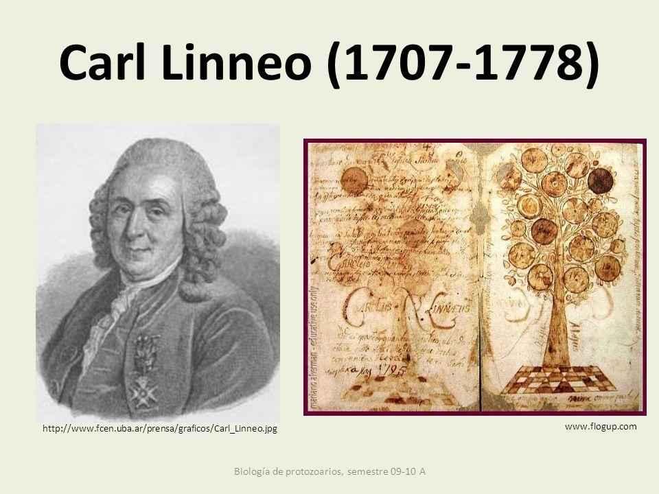 Carl Linneo (1707-1778) www.flogup.com http://www.fcen.uba.ar/prensa/graficos/Carl_Linneo.jpg Biología de protozoarios, semestre 09-10 A