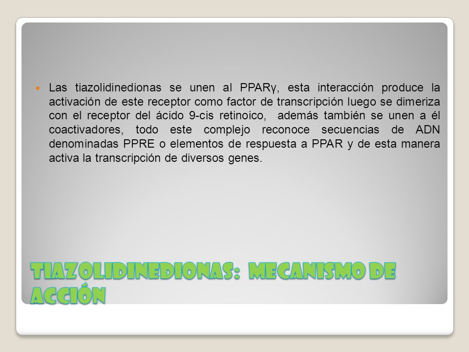 Las tiazolidinedionas se unen al PPARγ, esta interacción produce la activación de este receptor como factor de transcripción luego se dimeriza con el