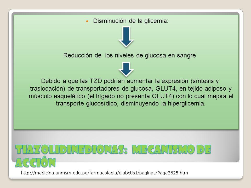Disminución de la glicemia: Reducción de los niveles de glucosa en sangre Debido a que las TZD podrían aumentar la expresión (síntesis y traslocación)
