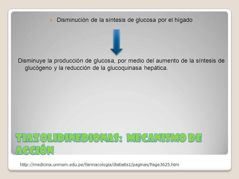 Disminución de la síntesis de glucosa por el hígado Disminuye la producción de glucosa, por medio del aumento de la síntesis de glucógeno y la reducci