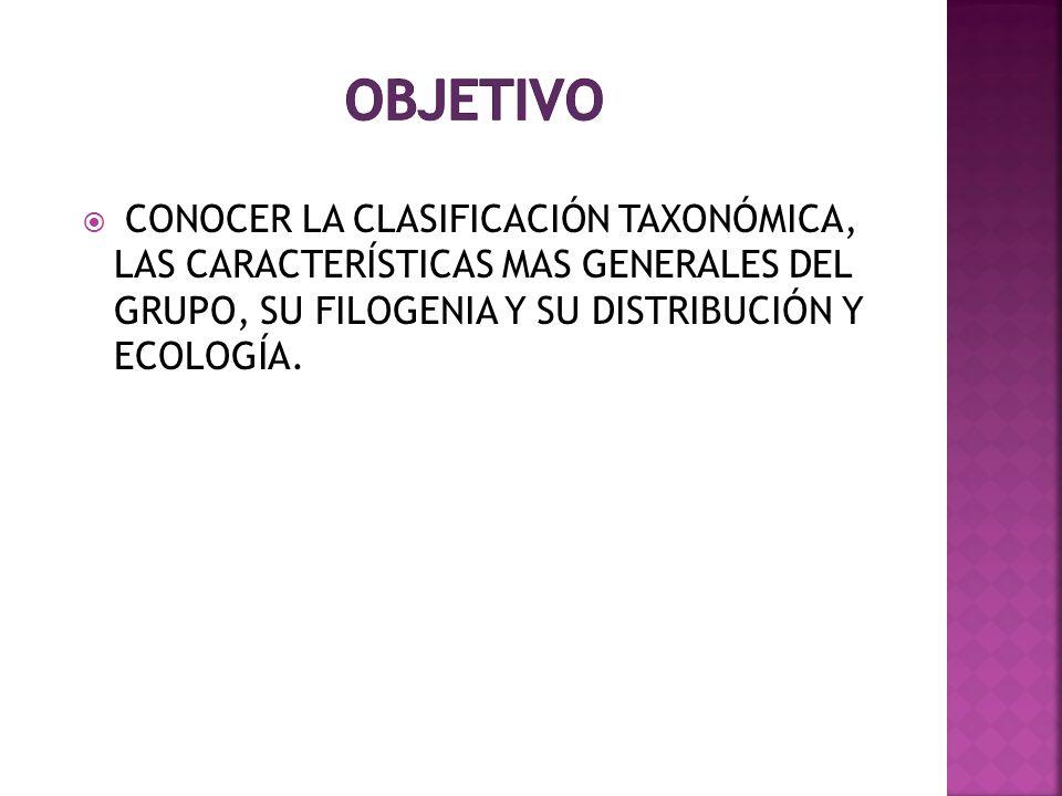 CONOCER LA CLASIFICACIÓN TAXONÓMICA, LAS CARACTERÍSTICAS MAS GENERALES DEL GRUPO, SU FILOGENIA Y SU DISTRIBUCIÓN Y ECOLOGÍA.