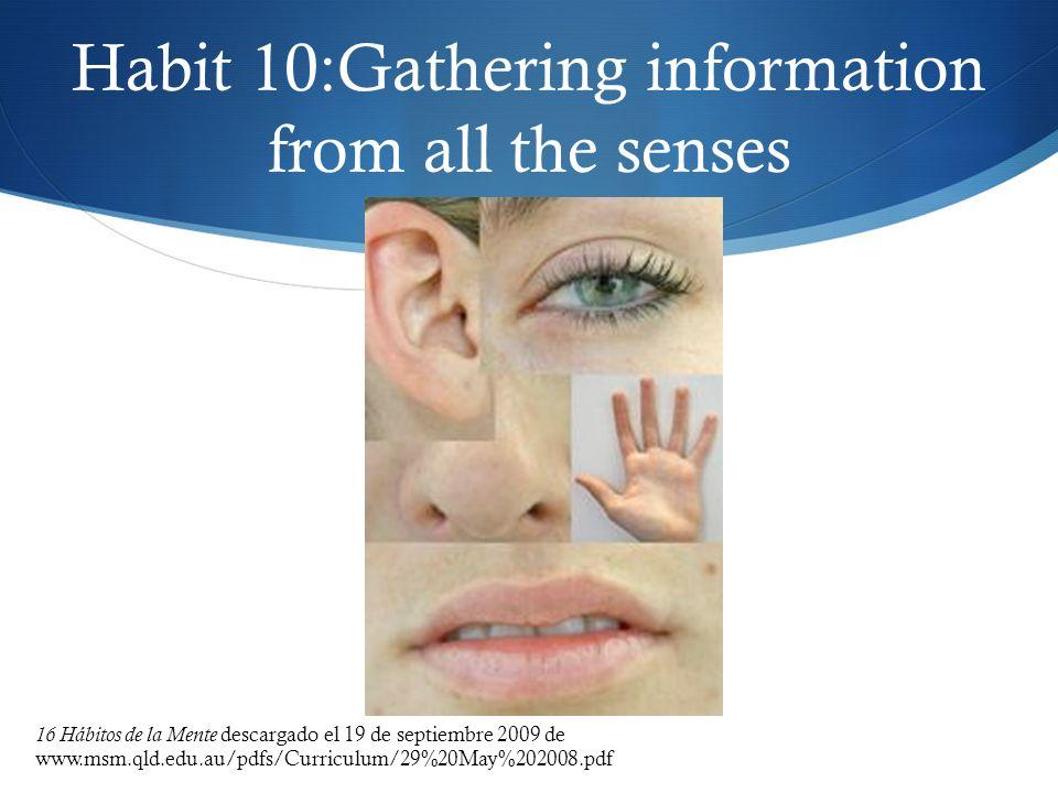 Habit 10:Gathering information from all the senses 16 Hábitos de la Mente descargado el 19 de septiembre 2009 de www.msm.qld.edu.au/pdfs/Curriculum/29
