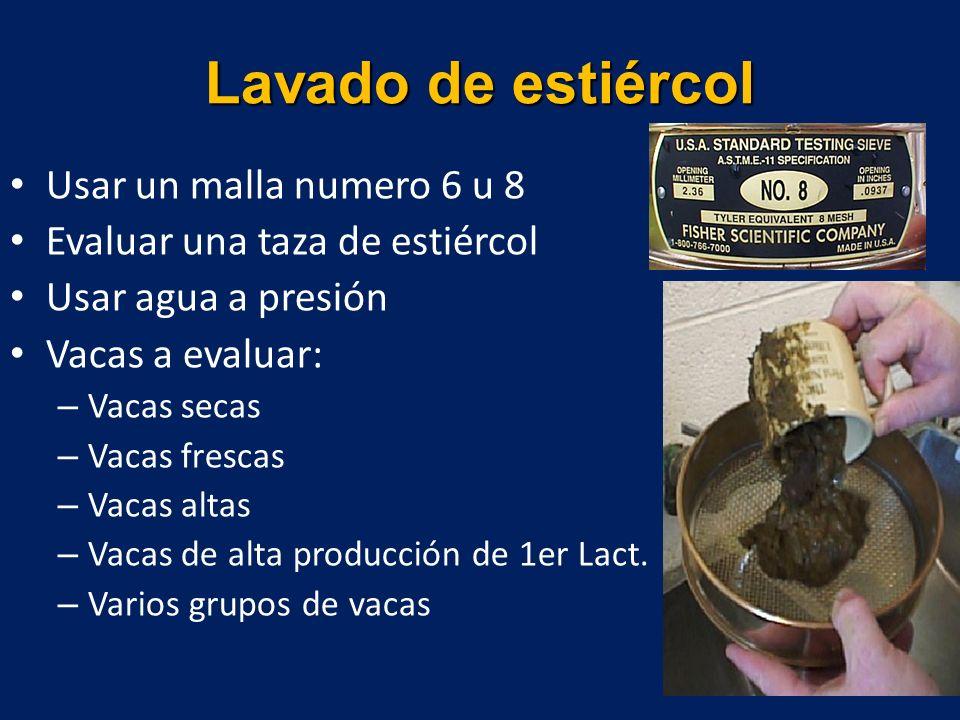 Usar un malla numero 6 u 8 Evaluar una taza de estiércol Usar agua a presión Vacas a evaluar: – Vacas secas – Vacas frescas – Vacas altas – Vacas de alta producción de 1er Lact.
