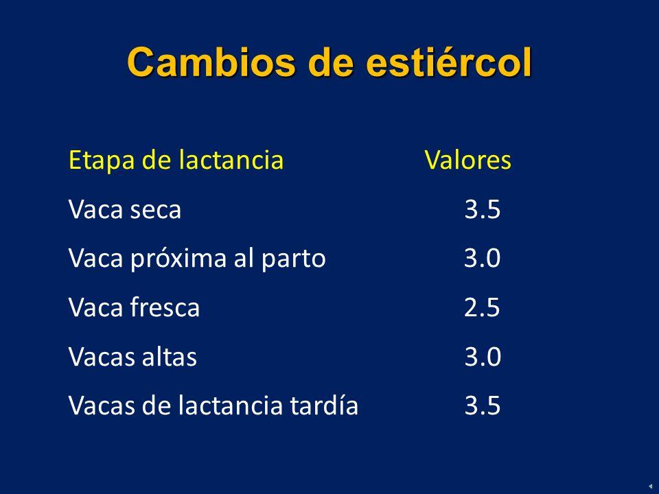 Cambios de estiércol Etapa de lactancia Valores Vaca seca 3.5 Vaca próxima al parto3.0 Vaca fresca2.5 Vacas altas 3.0 Vacas de lactancia tardía 3.5