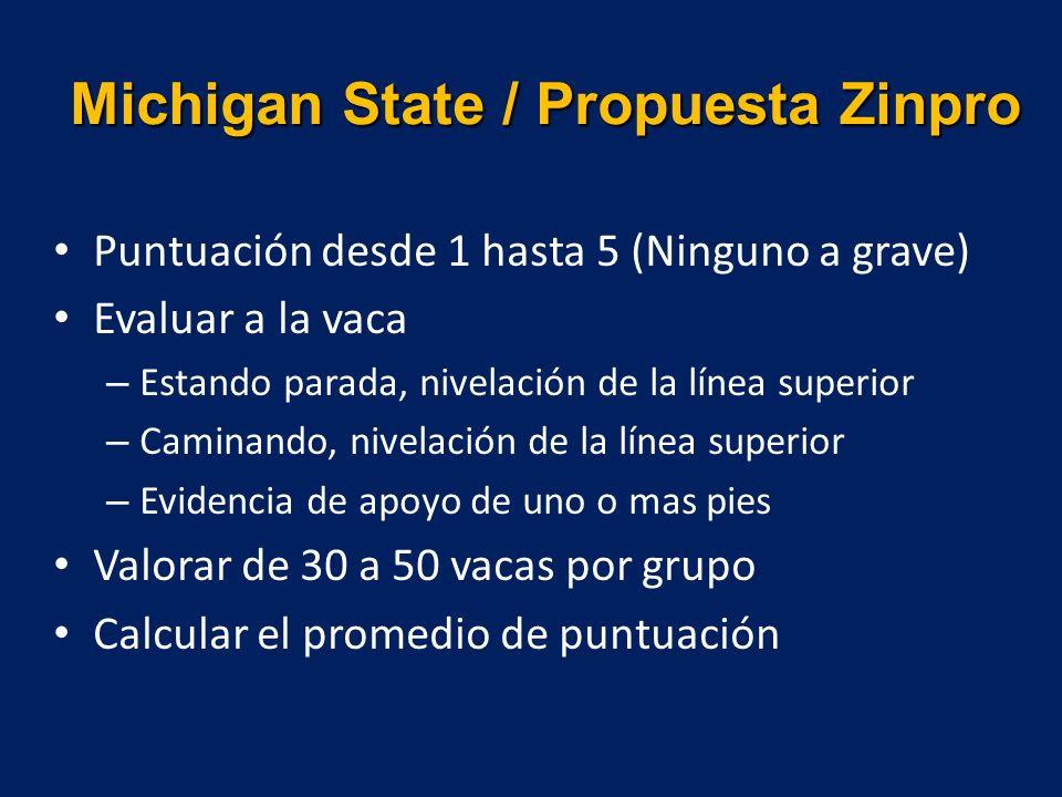Michigan State / Propuesta Zinpro Puntuación desde 1 hasta 5 (Ninguno a grave) Evaluar a la vaca – Estando parada, nivelación de la línea superior – C