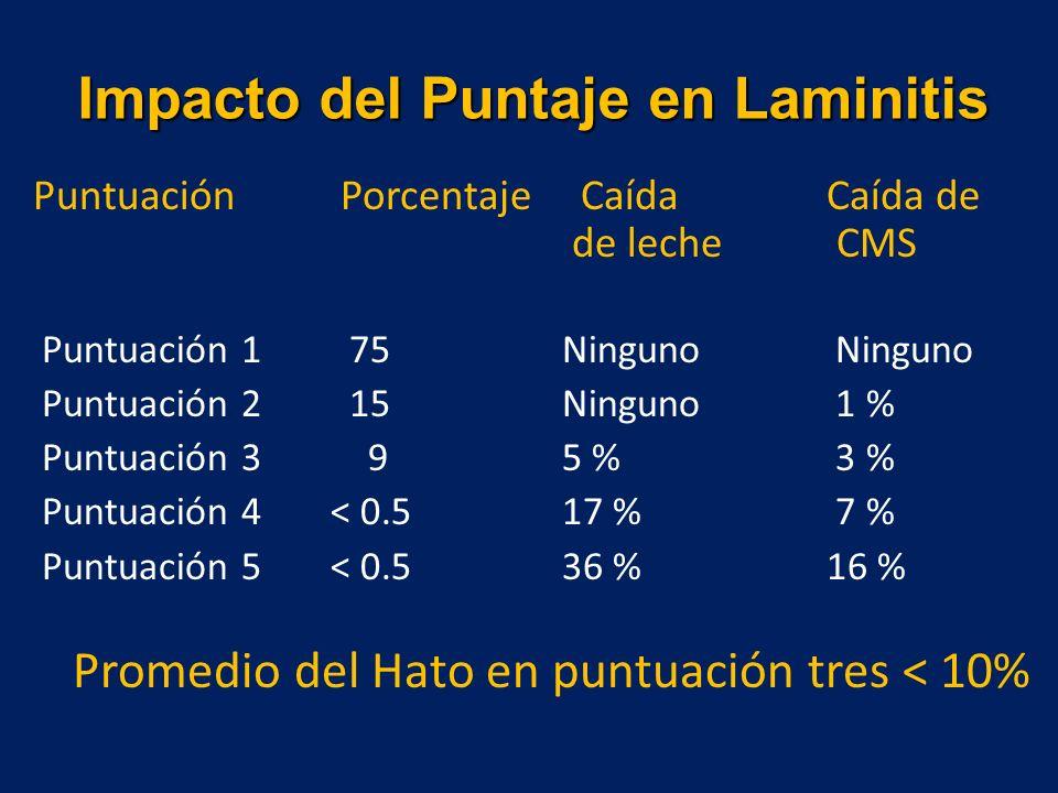 Impacto del Puntaje en Laminitis Puntuación Porcentaje Caída Caída de de leche CMS Puntuación 1 75Ninguno Ninguno Puntuación 2 15Ninguno 1 % Puntuación 3 95 % 3 % Puntuación 4< 0.517 % 7 % Puntuación 5< 0.536 %16 % Promedio del Hato en puntuación tres < 10%