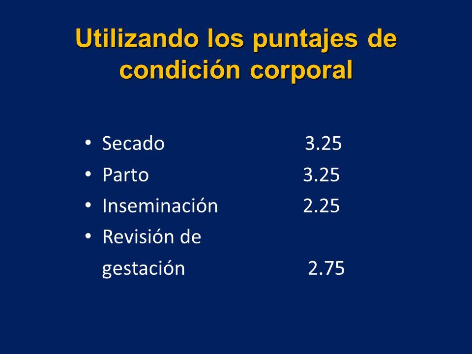 Utilizando los puntajes de condición corporal Secado 3.25 Parto 3.25 Inseminación 2.25 Revisión de gestación 2.75