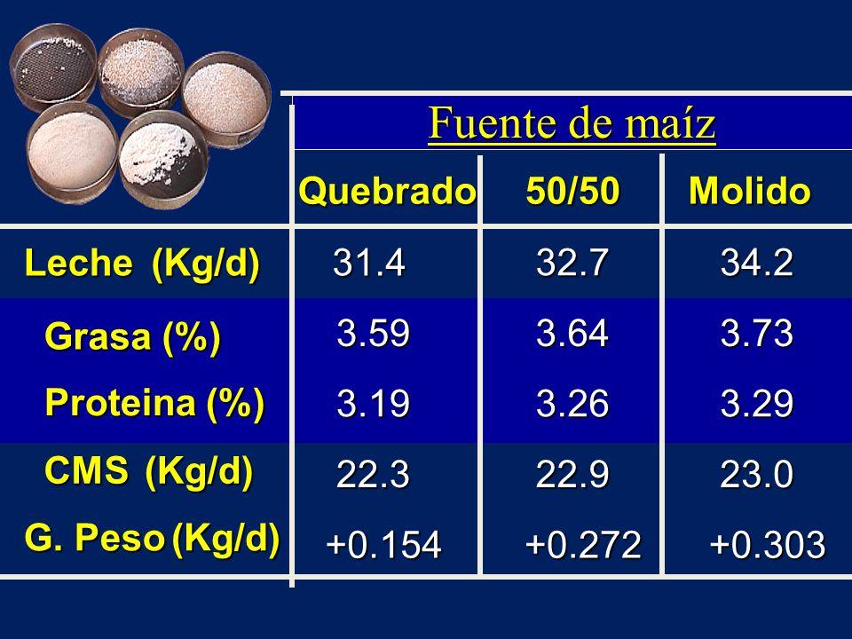 Fuente de maíz Quebrado50/50Molido Leche(Kg/d)31.4 32.734.2 Grasa (%) 3.593.643.73 Proteina (%) 3.193.263.29 CMS(Kg/d) 22.322.923.0 G. Peso (Kg/d) +0.