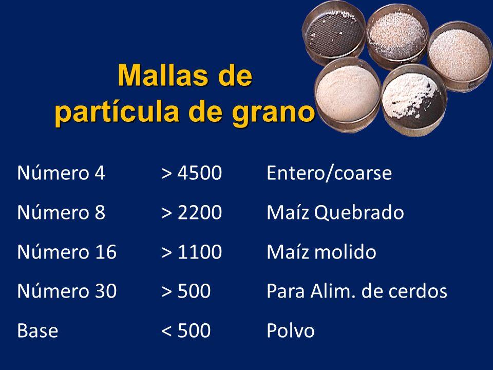 Mallas de partícula de grano Número 4 > 4500 Entero/coarse Número 8 > 2200Maíz Quebrado Número 16 > 1100Maíz molido Número 30 > 500Para Alim.