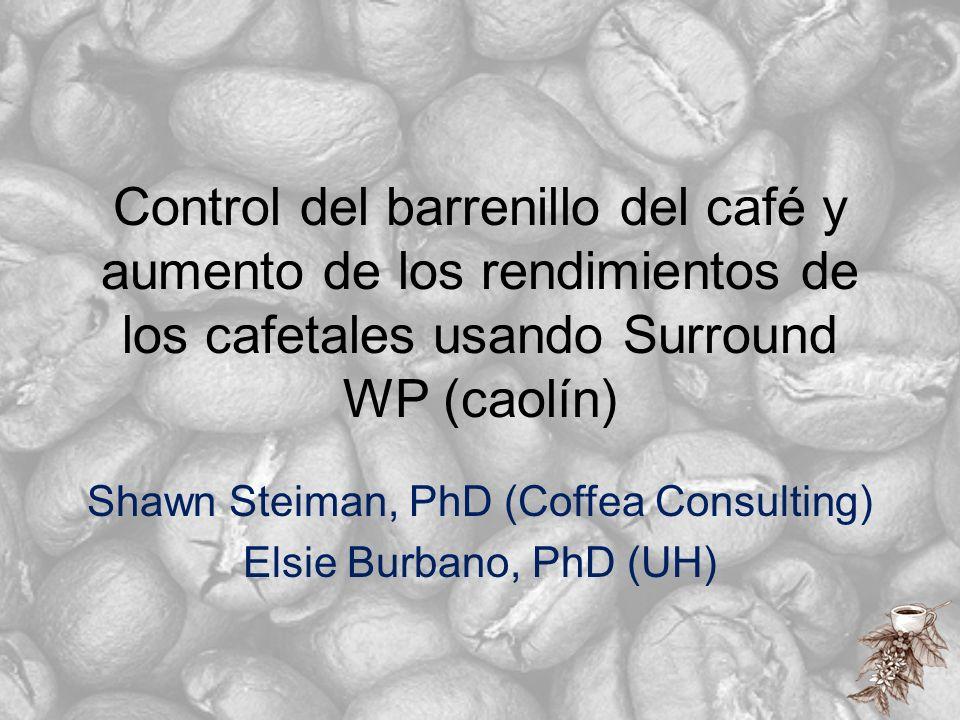 Control del barrenillo del café y aumento de los rendimientos de los cafetales usando Surround WP (caolín) Shawn Steiman, PhD (Coffea Consulting) Elsi